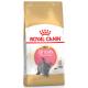 Royal Canin Breed Nutrition Kitten British Shorthair