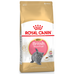 Royal Canin Breed Nutrition Kitten British Shorthair