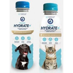 Oralade Hydrate+ pour chien et chat