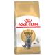 Royal Canin Breed Nutrition British Shorthair