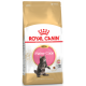 Royal Canin Breed Nutrition Kitten Maine Coon