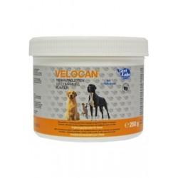 NutriLabs Velocan comprimés à mâcher pour chien