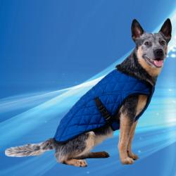 Aqua Coolkeeper manteau rafraîchissant pour chien