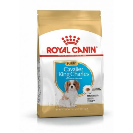 Royal Canin Breed Nutrition Cavalier King Charles Junior