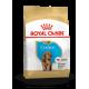 Royal Canin Breed Nutrition Cocker Junior
