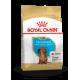 Royal Canin Breed Nutrition Teckel junior