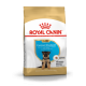 Royal Canin Breed Nutrition Berger Allemand Junior