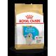 Royal Canin Breed Nutrition Golden Retriever Junior