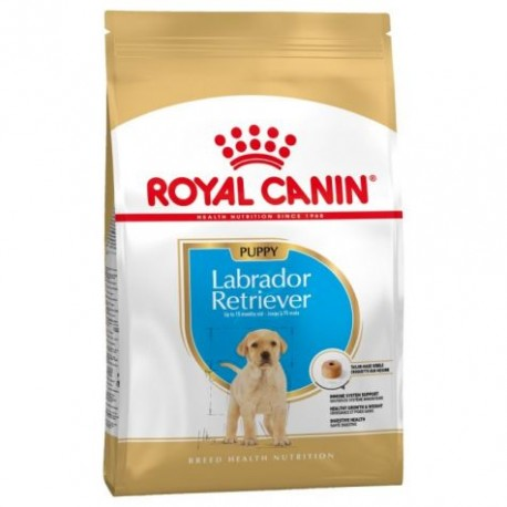 Royal Canin Breed Nutrition Labrador Retriever Junior