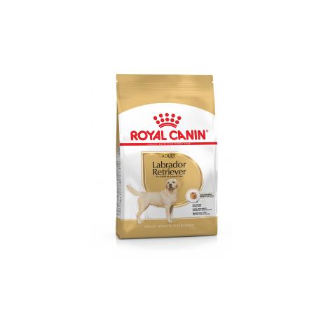 Royal Canin Breed Nutrition Labrador Retriever