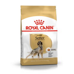Royal Canin Breed Nutrition Setter Adult