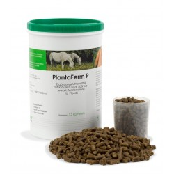 PlantaFerm Ufamed granulés pour chevaux