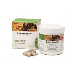 EnteroRegén complément alimentaire pour chien, chat et NAC