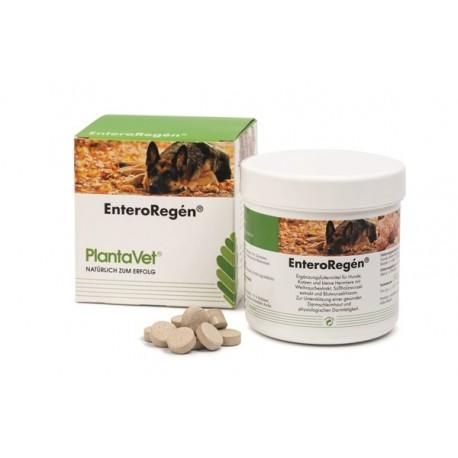 EnteroRegén - aliment complémentaire pour une activité gastro-intestinale physiologique