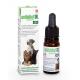 Anibidiol 500 huile pour chien et chat