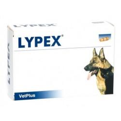 Vetplus Lypex pour chien et char