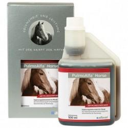 Pulmo Alfa Horse