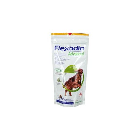 Flexidin Advanced pour chiens