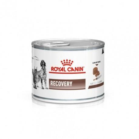 Royal Canin Veterinary Diet Recovery pour chat et chien - Aliment humide en boîte
