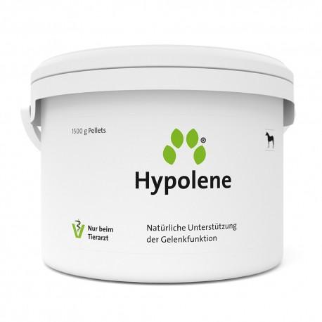 Inuvet Hypolene pellets pour chevaux