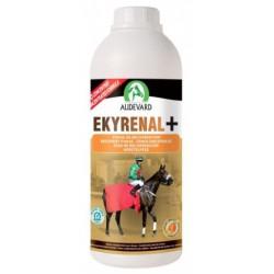 Audevard Ekyrenal Plus pour chevaux
