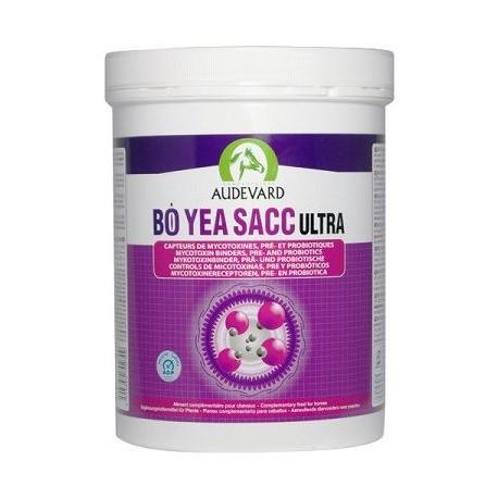 Audevard Bo Yea Sacc Ultra