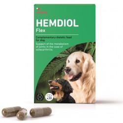 Hemdiol Flex pour chien